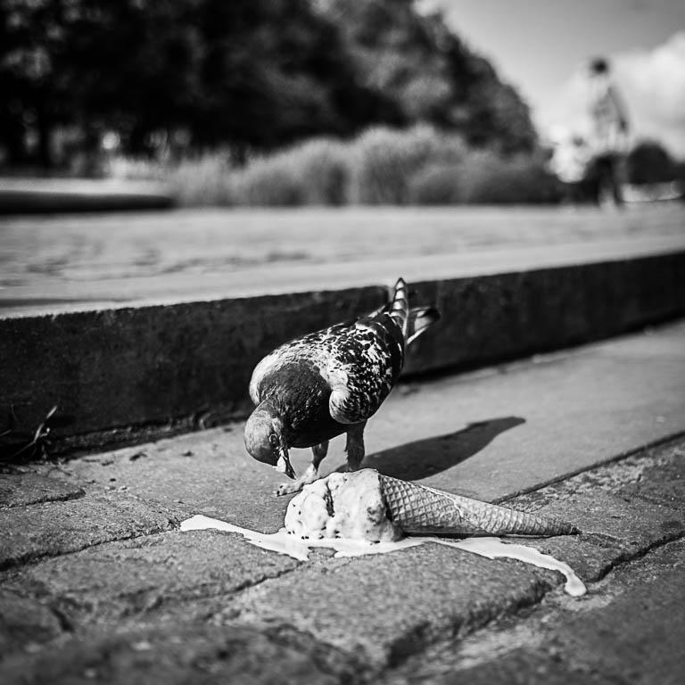 #36 - A destroyed childhood